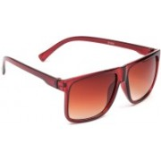 Eyeland Wayfarer, Rectangular Sunglasses(Brown, Clear)