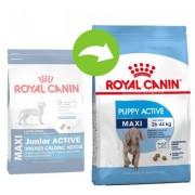 15 kg Maxi Junior Active Royal Canin Hondenvoer