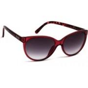 Kenneth Cole Wayfarer Sunglasses(Grey)
