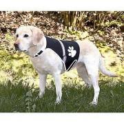 Trixie Cane Vest Flash con Usb L (Cani , Abbigliamento per cani , G...