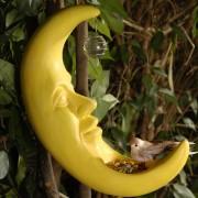Hranitoare pasari Luna Fosforescenta