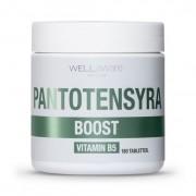 WellAware Health B5 Pantontensyra 180 tabletter