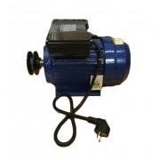 Motor electric monofazat asincron Micul Fermier putere 3 kW/4CP 1400RPM