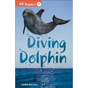 Diving Dolphin, Paperback/Karen Wallace