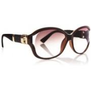 DE RENE Round Sunglasses(Brown)