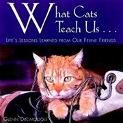 What Cats Teach Us: Life's Lessons Learned from Our Feline Friends, Hardcover/Glenn Dromgoole