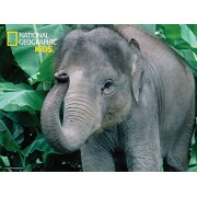 National Geographic Kids 100 piece 3D Puzzle Jigsaw elephant 10509
