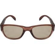 Criba Retro Square Sunglasses(Brown)