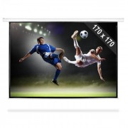 FrontStage Pantalla de proyector con perfecta calidad HDTV 244cm 170x170cm 1:1 (PS-LUA-PSBB-96)