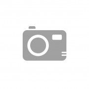 Sony FDR-AX53 noir reconditionné
