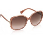 Tod's Over-sized Sunglasses(Brown, Violet)