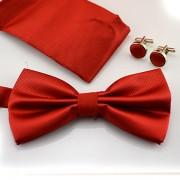 Accesorii elegante pentru barbati - papion, batista si butoni rosii