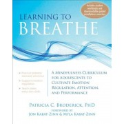 Learning to Breathe: A Mindfulness Curriculum for Adolescents to Cultivate Emotion Regulation, Attention, and Performance, Paperback