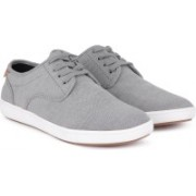 Steve Madden Sneakers For Men(Grey, Brown)