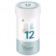 Biochemie Pflüger® Nr. 12 Calcium sulfuricum D6 Tabletten 400 St Tabletten