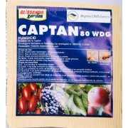 CAPTAN WDG 15G