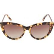 Hidesign Cat-eye Sunglasses(Brown)