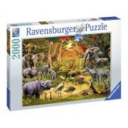 Puzzle Animale la oaza, 2000 piese