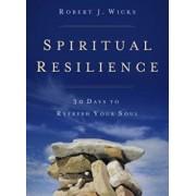 Spiritual Resilience: 30 Days to Refresh Your Soul, Paperback/Robert J. Wicks