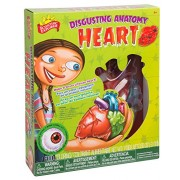 Scientific Explorer Disgusting Anatomy of the Heart Science Kit, Multi Color