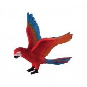 Papagáj L