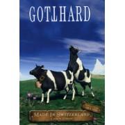 Gotthard - Made In Switzerland Live ( DVD + CD) - Preis vom 02.04.2020 04:56:21 h
