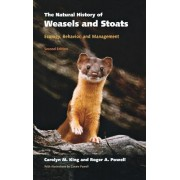 The Natural History of Weasels and Stoats: Ecology, Behavior, and Management