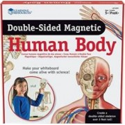 Jucarie educativa Learning Resources Human Body - Double Sided Magnetic
