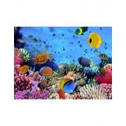 SlaapTextiel Fotobehang Onder De Zee 232 cm x 315 cm