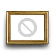 ThumbsUp Hugz Deluxe die Decke mit Ärmeln Blazing red