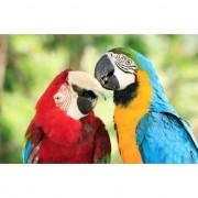 Merkloos 3D magneten met papegaaien