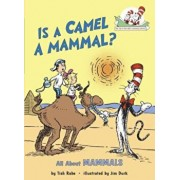 Is a Camel a Mammal': All about Mammals, Hardcover/Tish Rabe