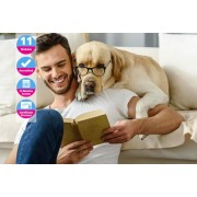 International Open Academy £12 (from International Open Academy) for an animal psychology online course – build a positive relationship with your pet