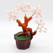 Copac in ghiveci cu pietre de cuart roz - 14cm