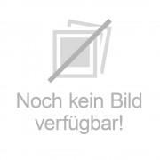 Ludwig Artzt GmbH Thera Band 2,5 m mittel stark rot 1 St