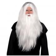 Set peruca si barba de vrajitor