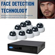 OwlTech 8CH Detección de rostros NVR Resolución de hasta 5MP + 8x 1080P Cámara Domo de 2MP 2.812mm Motorized IP interior con Smart IR + WDR + PoE + 2TB HDD + 30,5m Cable y Accesorios