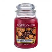 Yankee Candle Mandarin Cranberry vonná svíčka 623 g