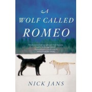 A Wolf Called Romeo, Paperback