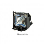 NEC Ersättningslampa för NEC PA522U, PA572W, PA621U, PA622U, PA671W, PA672W, PA722X - kompatibel modul (ersätter: NP26LP)