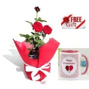 ES ROSE GIFT NATURAL LIVE PLANT With Gift Anniversary Gift Mug