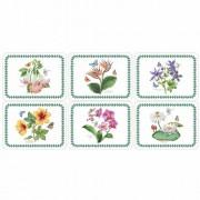 Pimpernel 6-tlg. Tischset Exotische Botanik Pimpernel