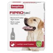 Beaphar Fiprotec Spot-On Large Hond