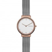 Ceas Skagen Ancher SKW2616