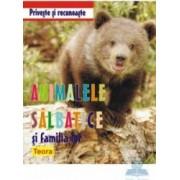 Priveste si recunoaste - Animalele salbatice si familia lor
