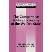 The Comparative Political Economy of the Welfare State, Paperback/Thomas Janoski