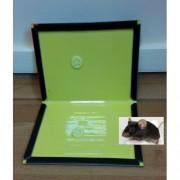 Capcană pentru șoareci/ șobolani cu adeziv 34/22 cm 3 buc.