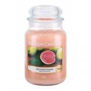 Yankee Candle Delicious Guava 623 g vonná sviečka unisex