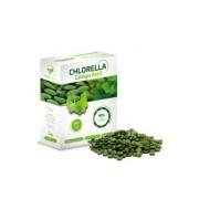 Chlorella Ginkgo Fresh 250g (Chlorella pyrenoidosa)
