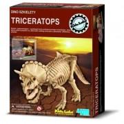 Wykopaliska Triceratops